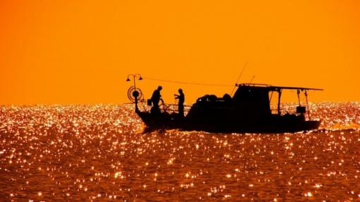 Vaikystės pomėgis virto sėkmingu žuvininkystės verslu