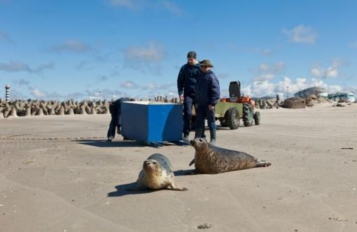 Jūrų muziejus prašo žvejų pagalbos