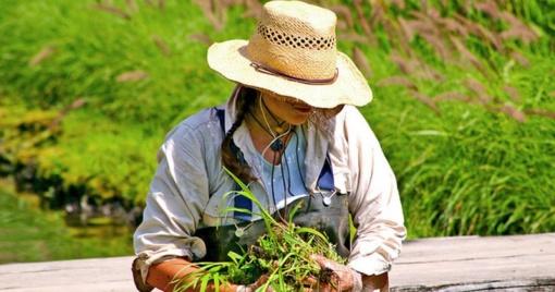 Kaip išvengti nugaros skausmų mėgstantiems darbuotis sode
