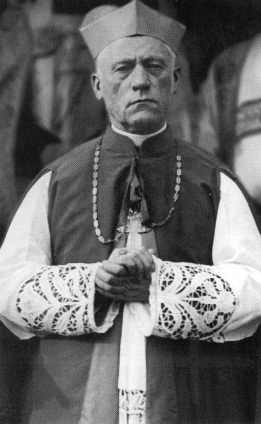 Vilniaus arkivyskupas G. Grušas: garbingasis Teofilius tampa mūsų tautos vėliavnešiu