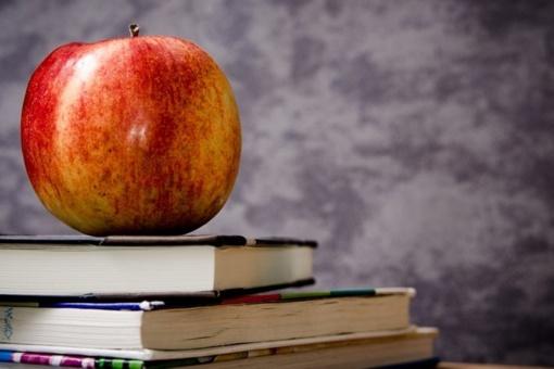 Seimas linkęs dar metams pratęsti išlygą dėl mokytojų darbo apmokėjimo