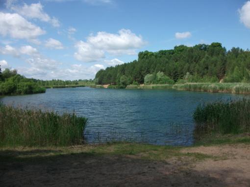 Ištirta Pasvalio rajono maudyklų vandens kokybė