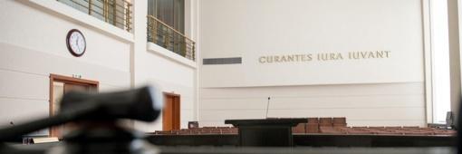 Seimas kreipsis į Konstitucinį Teismą dėl dvigubos pilietybės išimčių