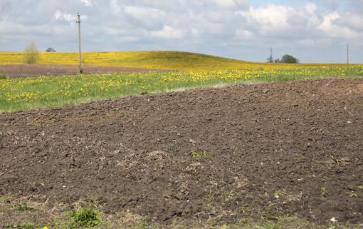 Savivaldybių žemės ūkio skyriams gresia permainos