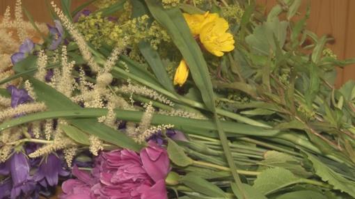 Pirmyn į pievas ir miškus - dabar pats metas pasirūpinti natūraliais vaistais (VIDEO)