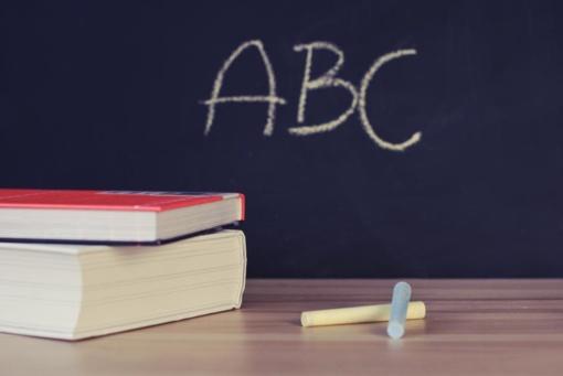 Seimas dar metams atidėjo mokytojų etatinį apmokėjimą