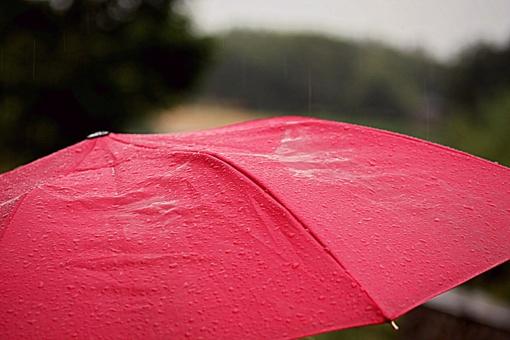 Valstybės dieną lietaus neišvengsime