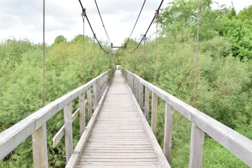 Kabamasis Lankupių tiltas – ilgiausias kabamasis tiltas Lietuvoje