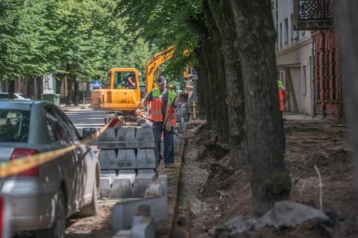 Miško gatvės kapitalinis remontas: vietoj senų ir pavojų keliančių medžių sodins naujus
