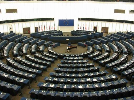 VTEK nutraukė tyrimus dėl dešimties europarlamentarų elgesio