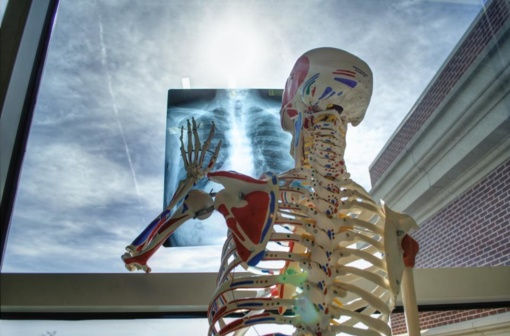 Gydytoja onkologė: keisti įpročius ir pradėti sveikiau gyventi – niekada nevėlu