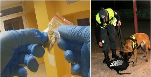 Palangoje ir Neringoje bausti alkoholį ir narkotikus vartoję asmenys