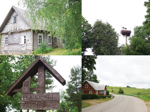 Plaučiškių kaimo ramybę saugo gandrai