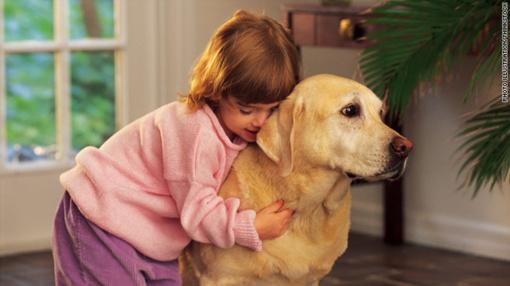 Naminiai gyvūnai - užkrečiamų ligų infekcijos šaltinis