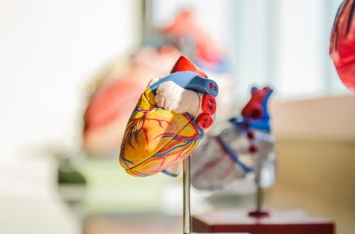 Žengiama link dirbtinio intelekto diegimo sveikatos priežiūroje