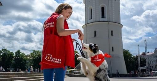 Vasarą sostinėje turizmo savanoriai budėjo beveik 1000 valandų