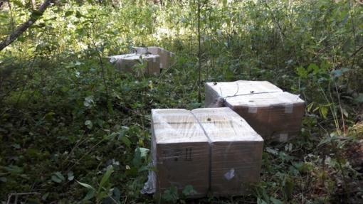Keturi Vilniaus rajono gyventojai gabeno 8 tūkst. pakelių kontrabandinių rūkalų