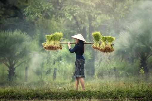 Lietuva baigia derybas dėl spartesnės vietnamiečių deportacijos