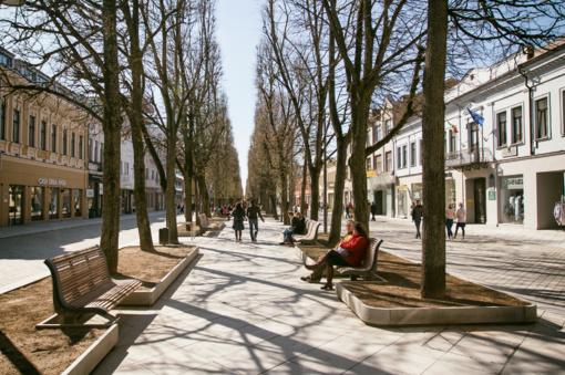 Gerėjantys orai spartina Kauno gatvių ir parkų tvarkytojų darbus