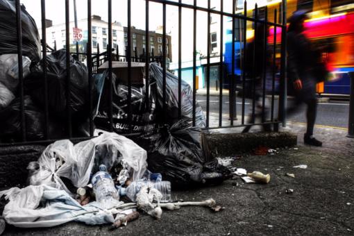 Vilniečiai šiemet nelegaliai paliko 5000 tonų atliekų