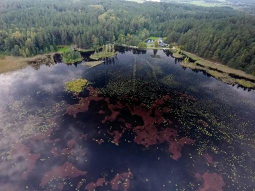 Nuostabi Lietuva: orientavimosi varžybų metu užfiksuoti kvapą gniaužiantys vaizdai