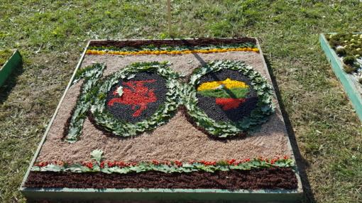 Joniškyje ūžia vienas didžiausių rudens renginių (FOTO)