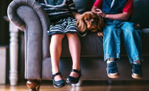 Vaikai vieni namuose: kaip pasirūpinti atžalų saugumu