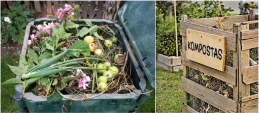 Žaliųjų atliekų tvarkymas rudenį: ką verta žinoti plungiškiams?