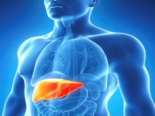 Seimas atšaukė įpareigojimą kurti Hepatito registrą