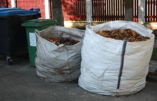 Tvarkome atliekas: nuo sugrėbtų lapų iki naudotų padangų