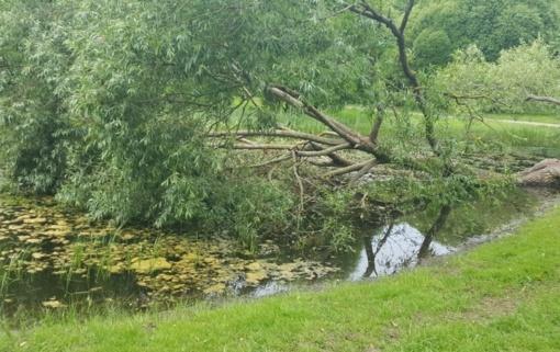 Šilalės rajone dėl nuvirtusių medžių tvenkinio vanduo ėmė plauti du kelius