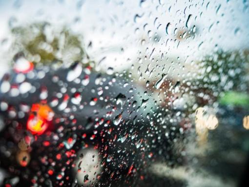 Visų Šventųjų dieną - lietus