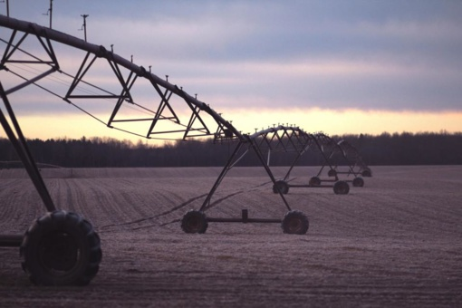 Žemės ūkio ministras patvirtino galutinius tiesioginių išmokų dydžius