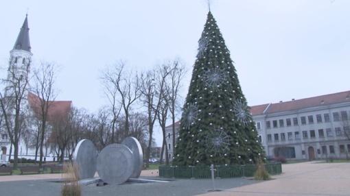 Gatvės apklausa: kaip šiauliečiai ir svečiai vertina miesto Kalėdinę eglę? (VIDEO)