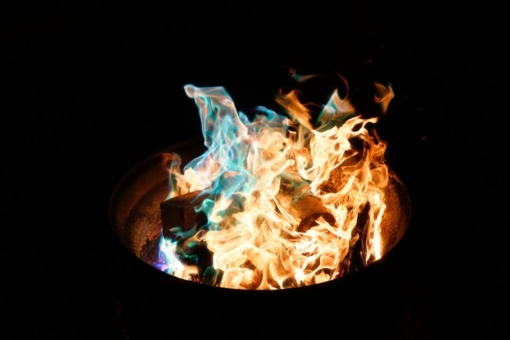 Alyvos degintojų baudos neatgraso nuo pražūtingo užsiėmimo
