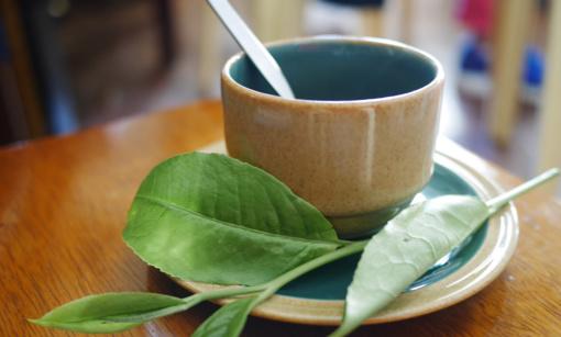 Daugėja sergančiųjų gripu ir peršalimo ligomis