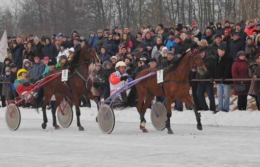 Vasario 3-ią Dusetose – ne vien žirginio sporto entuziastų šventė