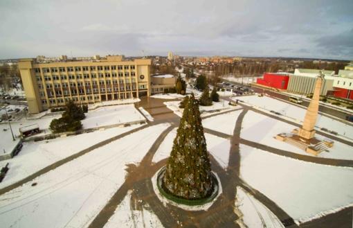 Įsižiebs Kalėdų eglės Kalvarijoje, Kazlų Rūdoje ir Marijampolėje