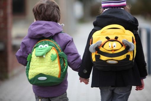 Siūloma leisti tėvams nuspręsti, kada vaikas pradės lankyti priešmokyklinę grupę
