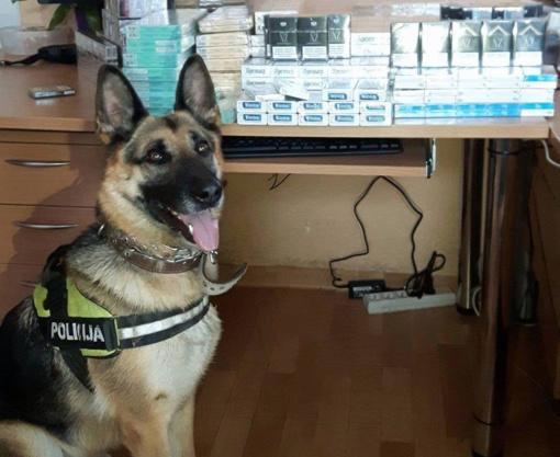 Kovai su neteisėta akcizais apmokestinamų prekių apyvarta pareigūnai pasitelkė tarnybinį šunį