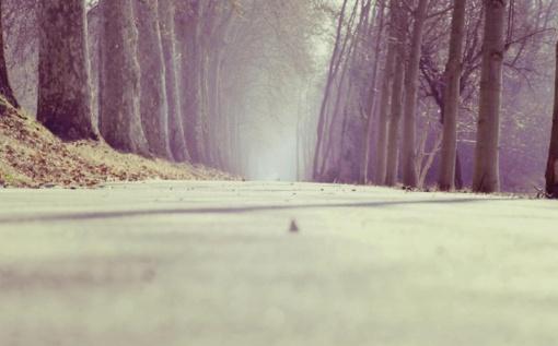 Praėjusią parą Lietuvos keliuose sužeista 20 žmonių, vienas žuvo