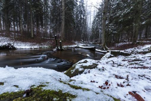 Orai: kol kas žiema laikysis tvirtai – šaltukas nesitrauks, snigs