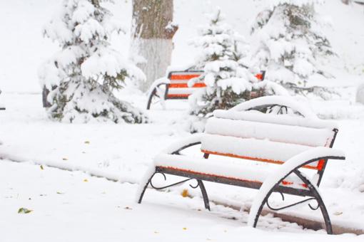 Ateinančius penkerius metus šaltos ir sniegingos žiemos tikimybė Europoje padidės