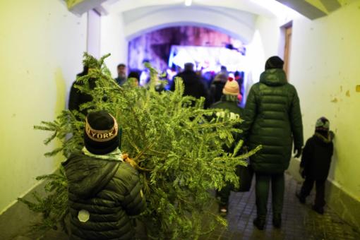 """Vilniaus mokytojų namų kiemelyje šventė - """"Lik sveika, Kalėdų eglute"""""""