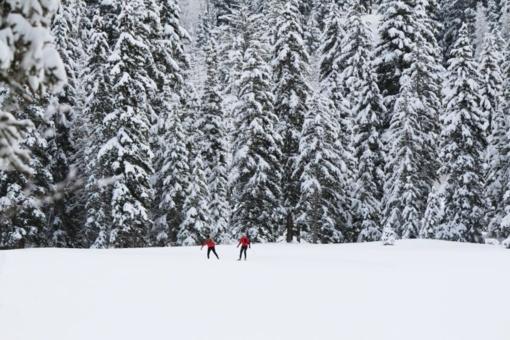 Specialistų patarimai: kaip tinkamai pasiruošti slidinėjimo sezonui?