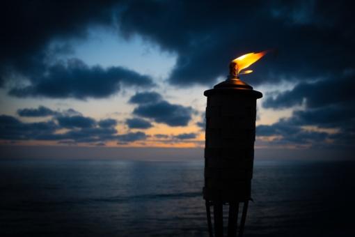 Bendruomenės sąšauka Palangoje: neškime šilumą ir šviesą!