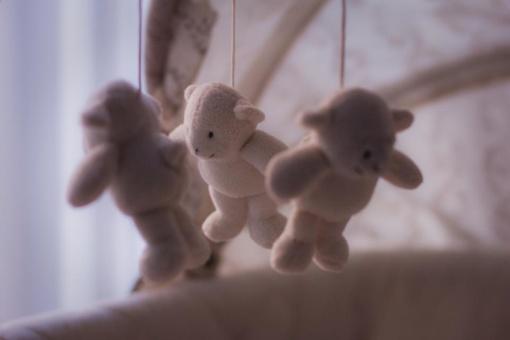 Praėję metai Druskininkams padovanojo 4 poras dvynukų