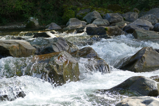 Sausio 19-ąją vanduo tampa stebuklingas