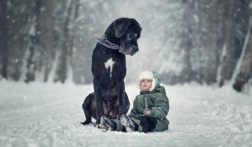 Nušalimo pavojai ir kaip apsisaugoti