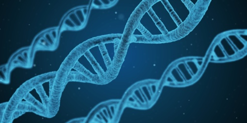 Mokslininkų tikslas – šalinti ne genetinių ligų padarinius, bet priežastis